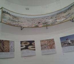Exposiciones y eventos